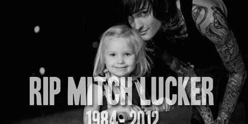 Mitch-Lucker-500x250