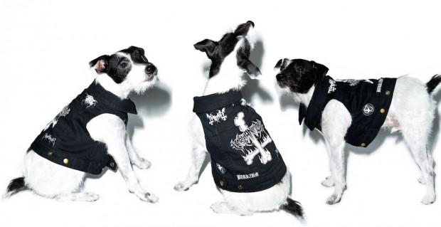 party-animalz-black-dog-vest