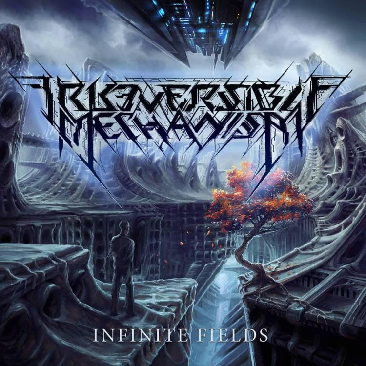 irreversible-mechanism-infinite-fields